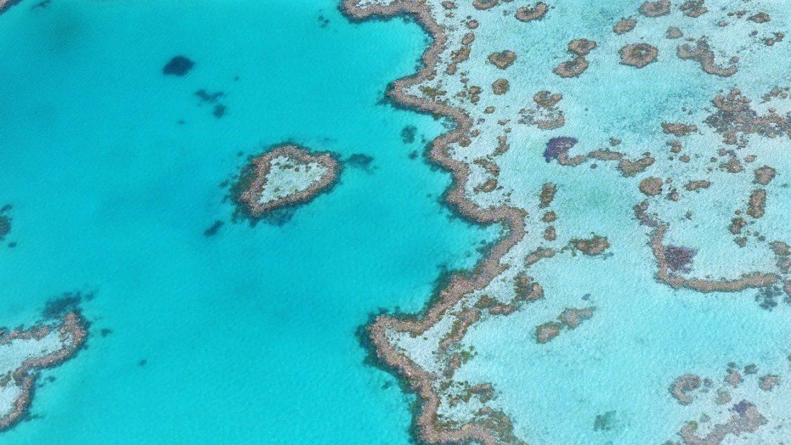 La Grande Barrière de Corail menacée à court terme selon l' Unesco.